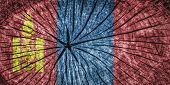 picture of bator  - Flag of Mongolia on cracked wooden texture - JPG