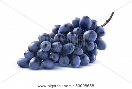 Blue Grapes Bunch No Leaf Isolated On White Background