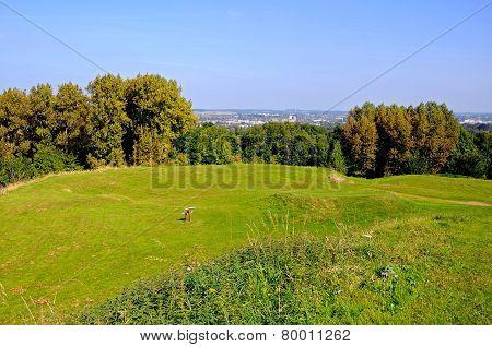 Staffordshire countryside, Stafford.