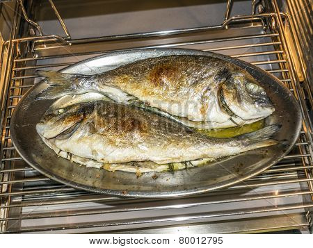 cooking fish in oven at home kitchen