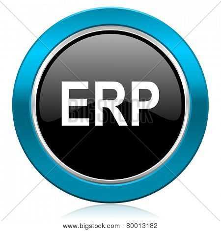 erp glossy icon