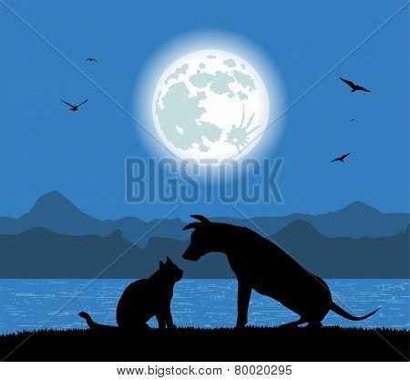 dog and cat under the full moon