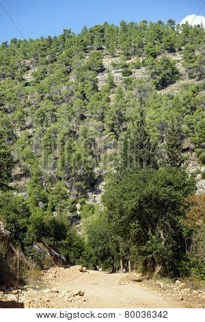 Judea Mountain National Park