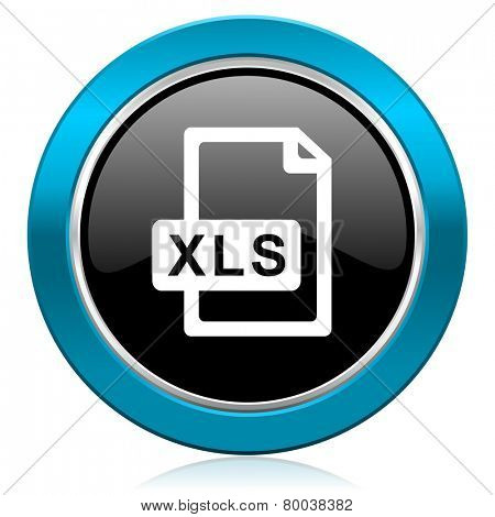 xls file glossy icon