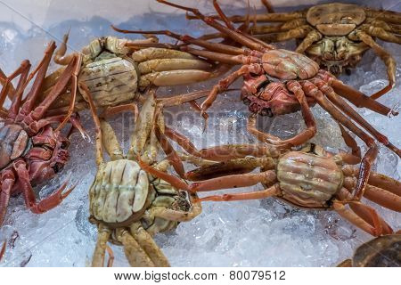 Fresh Crabs At Seafood Market