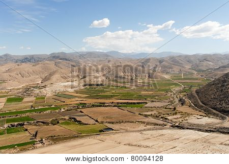 Field Terraces Of Colca Canyon, Peru