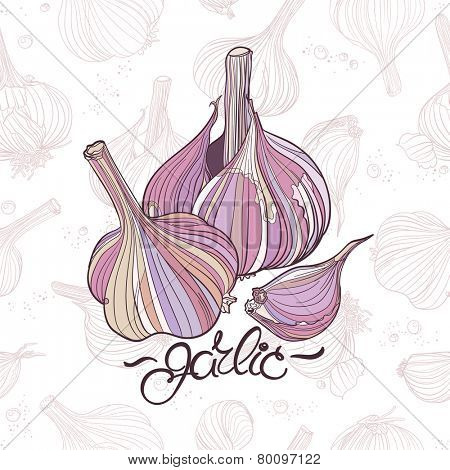 Garlic bulbs. Realistic shapes in natural colors. Two garlic bulbs and one clove on light seamless background with many different garlic drawings.
