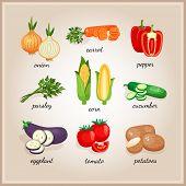 stock photo of ingredient  - Vegetables ingredients - JPG
