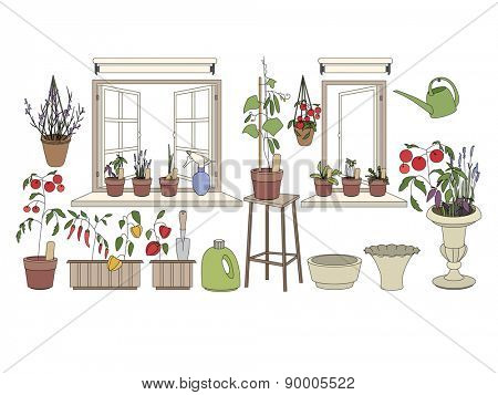 Flower pots with herbs and vegetables. Gardening tools. Plants growing on window sills and balcony