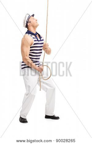 Full length portrait of a young male sailor pulling a rope and looking up isolated on white background