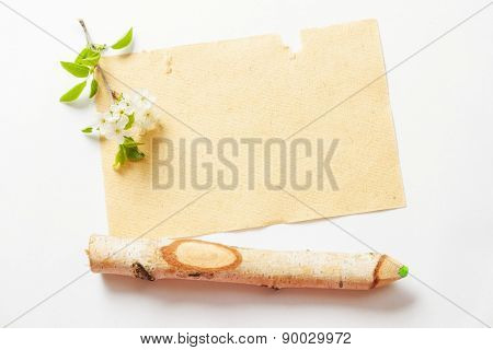 beautiful cherry blossoms on a branch with a pencil and a piece of textured paper on a white background