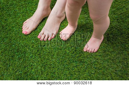 Babyand and Mother legs standing  on grass