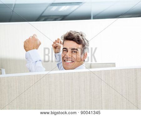 Portrait of successful manager with arms raised in cubicle