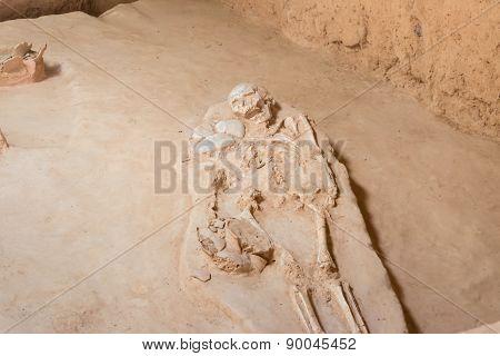 grave burial skeleton human bones