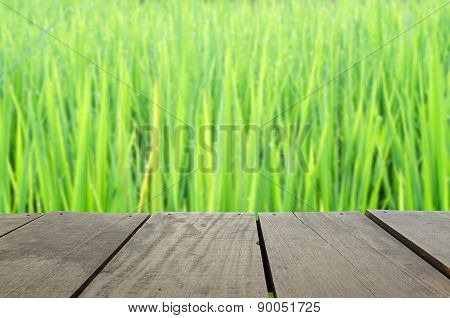 Defocus And Blur Image Of Terrace Wood And Beautiful Paddy Rice