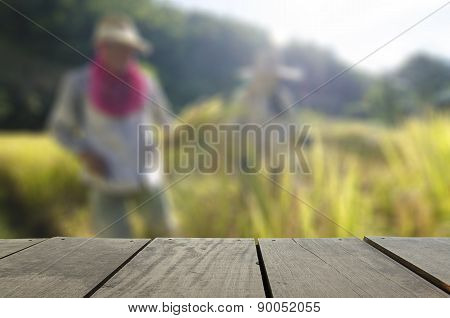 Defocus And Blur Image Of Terrace Wood And Farmer Harvest Paddy