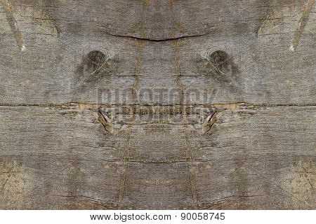 Natural face creature in old wood plank background