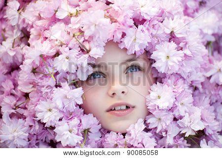 Little Girl Face Among Cherry Blossom