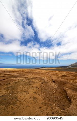 Bush Timanfaya   Volcanic And Summer  Spain Lagoon