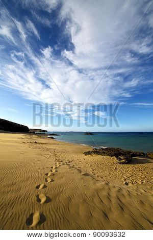 Footstep Cloud Beach  Water  Musk Pond  Coastline And Summer