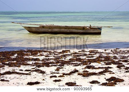 Relax  Of Zanzibar  Coastline Boat Pirague In The  Blue Lagoon