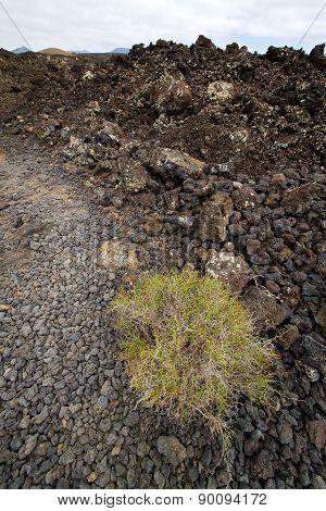 Stone Volcanes Lanzarote   Timanfaya  Sky  Hill