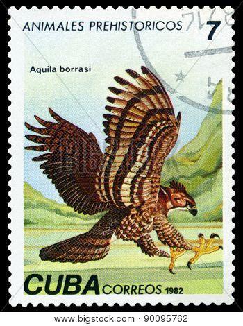 Vintage  Postage Stamp. Aquila Borrasi.