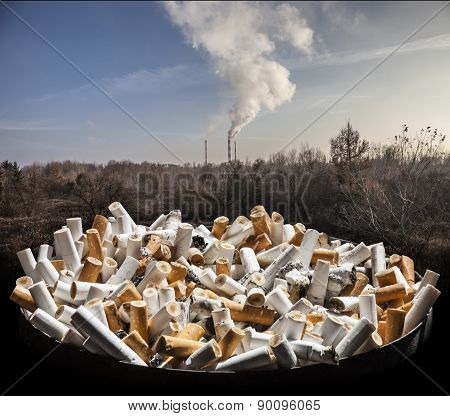 Cigarette smoke damages lungs - stop smoking!
