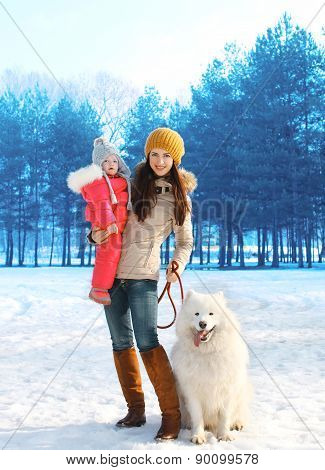 Happy Mother And Child Walking With White Samoyed Dog In Winter Day