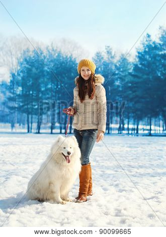 Woman Owner Walking With White Samoyed Dog In Winter Day
