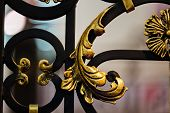 pic of wrought iron  - details of structure and ornaments of wrought iron fence and gate - JPG