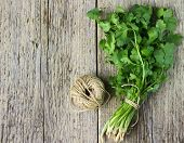 stock photo of cilantro  - Bunch fresh cilantro on a wooden table - JPG