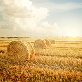 picture of haystack  - Summer Farm Scenery with Haystack on the Background of Beautiful Sunset - JPG