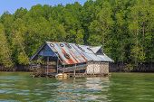 picture of floating  - Float fishing village on tropical river with trees on background in Krabi province of Thailand - JPG