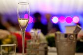picture of champagne glass  - Glass with champagne lit by nightclub lights - JPG