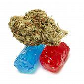 stock photo of cannabis  - Marijuana and Cannabis Bud - JPG