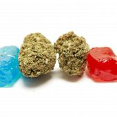picture of marijuana  - Marijuana and Hard Candy Containing Medical Marijuana THC - JPG