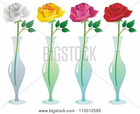 Single Roses