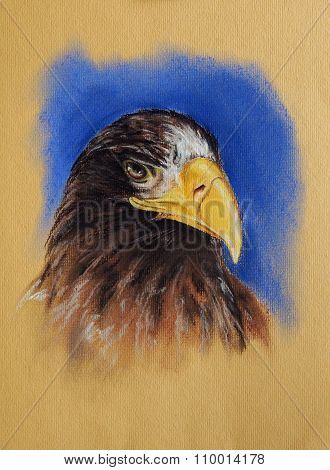 Eagle Head Pastel Drawing
