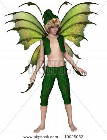 Christmas Fairy Elf Boy