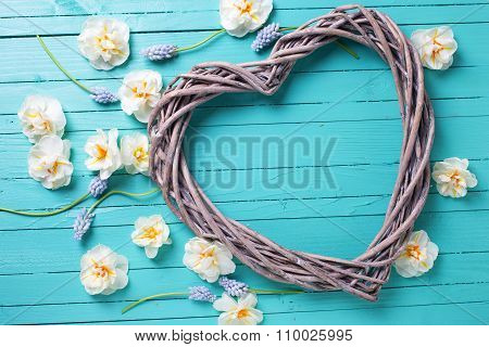 Decorative Heart And Fresh  Spring  White Narcissus And Muscaries