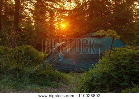 Tourist  Tent Stands In The Rays Of Setting Sun On The Background Of Coniferous Forest