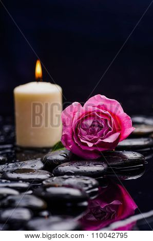 Pink rose with white candle on wet and therapy stones ,