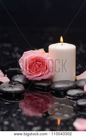Pink rose with candle on wet and therapy stones ,