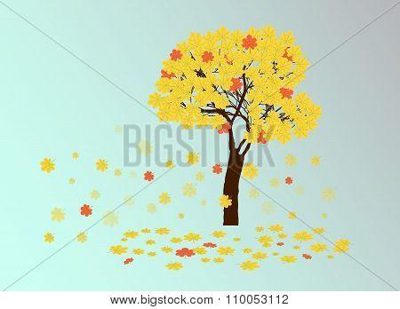 Autumn Yellow Chestnut Tree
