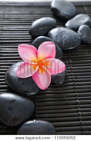 frangipani with black stones on bamboo black mat