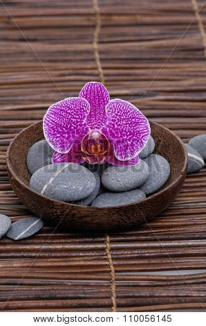 Pink orchid with gray stones in wooden bowl on mat