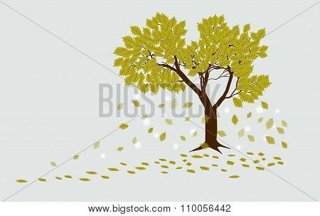 Autumn Oak Tree With Falling Leaves