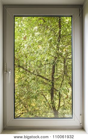Pvc Window And Green Of A Tree Park