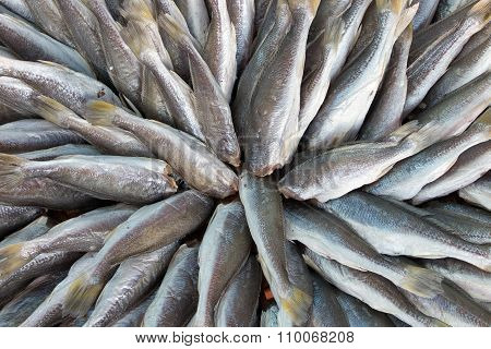Dried Fish Thailand